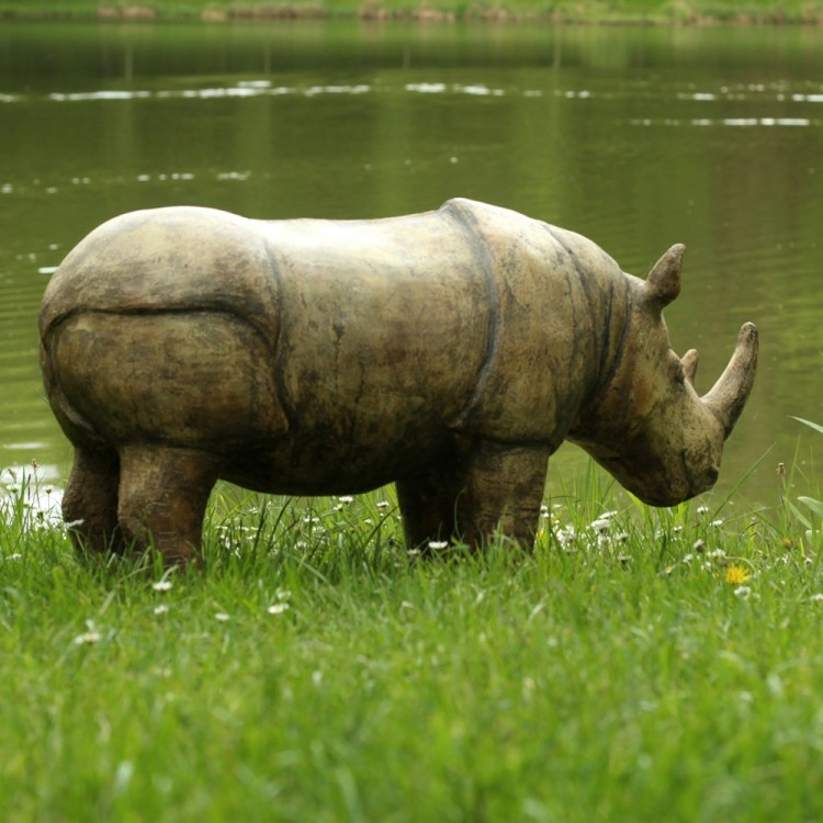 Rhinoceros by the Lake